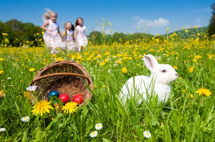 Happy Easter, Now Go Find Those Eggs!