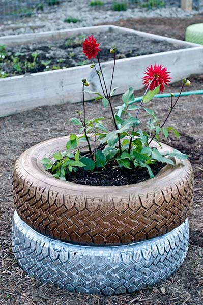 Spruce up your yard with some Recycled Planters